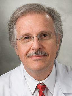 Robert N Stein